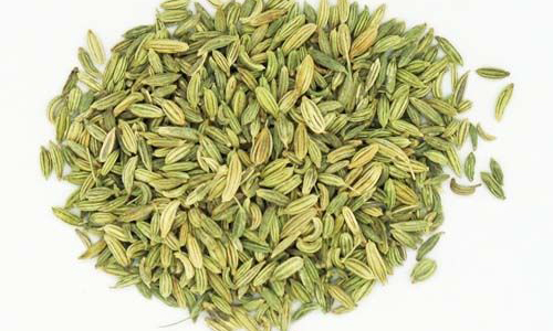 fennel_seed3